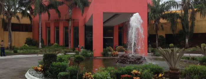 Hotel Terranova is one of Locais curtidos por Katia.