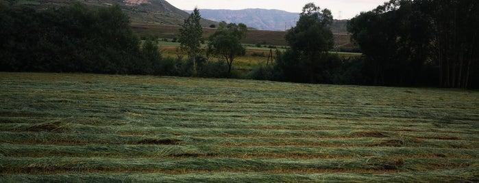 Maden is one of Locais curtidos por H.