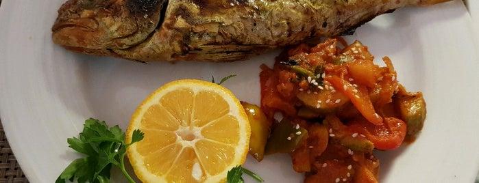 Rafael Restaurant | رستوران رافائل is one of Lugares guardados de Nora.