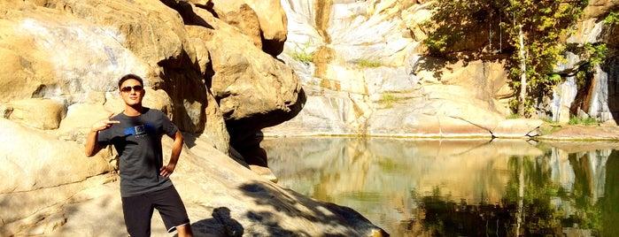 Cedar Creek Falls Trailhead is one of Locais salvos de Paresh.