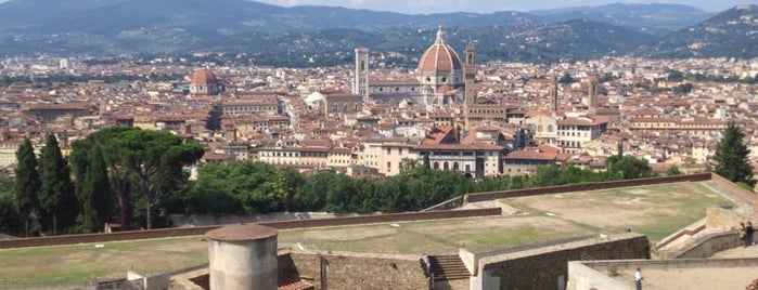 Forte di Belvedere is one of Firenze.
