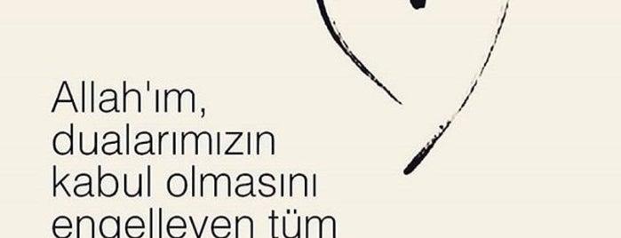 Alanya Ekmek Fırın Pastane & Cafe is one of Gespeicherte Orte von Özcan Emlak İnş 👍.