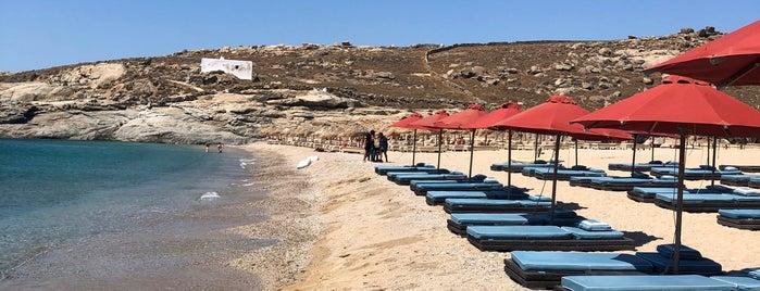 Lia Beach is one of Grécia.