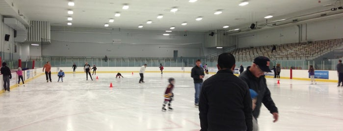 McFetridge Ice Arena is one of Chicago Rat Hockey.
