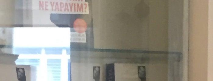 Yaşasın Hayat Kliniği is one of สถานที่ที่ Cigdem ถูกใจ.
