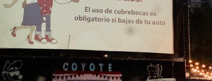 Autocinema Coyote is one of Lugares para visitar.