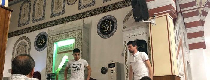 1. Organize Sanayi Saray Camii is one of Konya Selçuklu 2 Mescit ve Camileri.