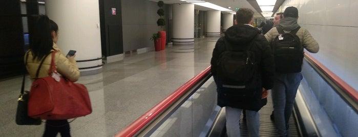 Терминал В is one of Nikitos : понравившиеся места.