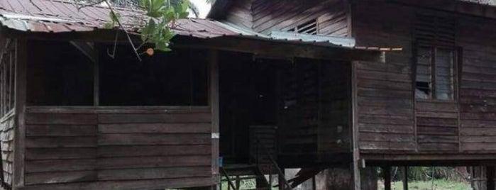 Kampung Bukit Kerayong is one of Dinos 님이 좋아한 장소.