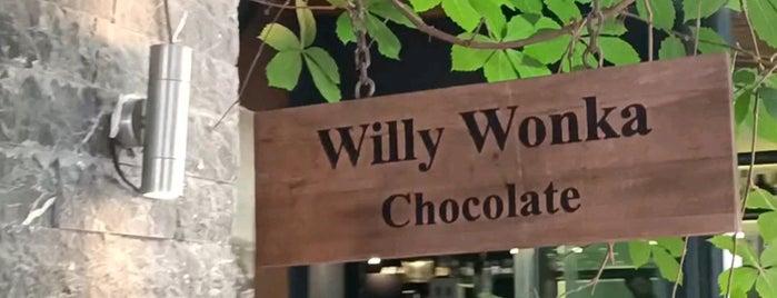 Willy Wonka Chocolate is one of aylakfare.