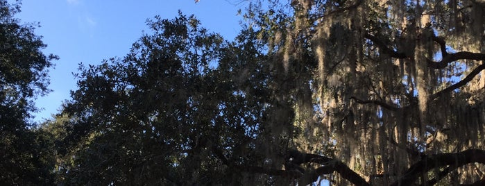 Highland Pines Park is one of City of Tampa Parks.
