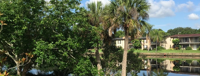 Ignacio Haya Linear Park is one of City of Tampa Parks.