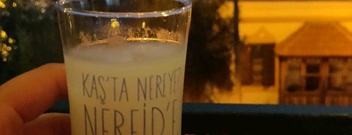 Nereid Gurme is one of T.