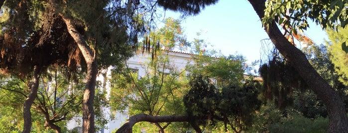 Πάρκο Ρόδου Βενιζελου Σοφοκλή is one of Theodosia : понравившиеся места.