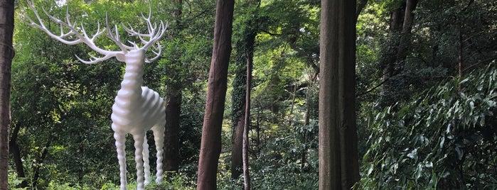 Meiji Jingu Museum is one of Posti che sono piaciuti a Rafael.