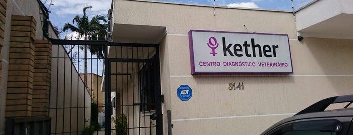 Kether Centro Diagnóstico Veterinário is one of Saúde.