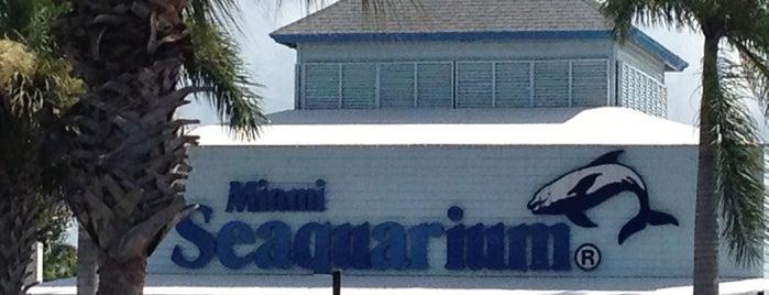 Miami Seaquarium is one of Visit to Miami.