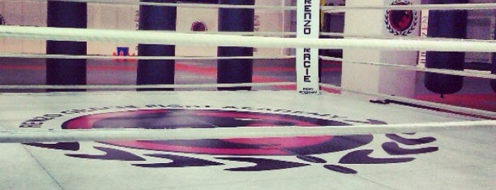 Renzo Gracie Fight Academy is one of Locais curtidos por Nick.