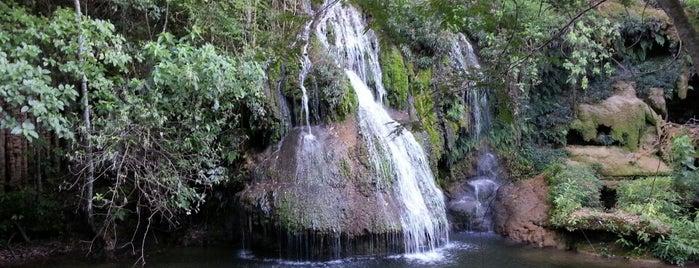 Parque das Cachoeiras is one of Locais curtidos por Dade.