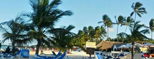 IFA Playa is one of Elisa : понравившиеся места.