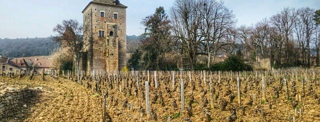 Chateau De Gevrey Chambertin is one of สถานที่ที่บันทึกไว้ของ Jean-Marc.