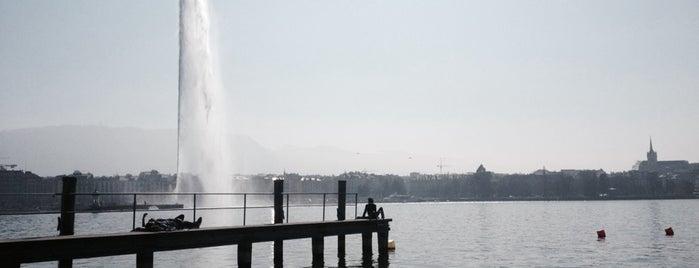 Buvette des Bains des Pâquis is one of Geneva.