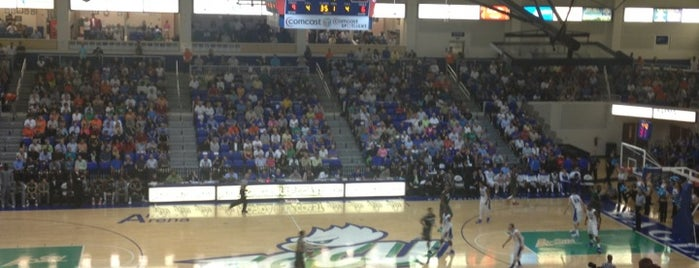 Alico Arena is one of NCAA Division I Basketball Arenas/Venues.