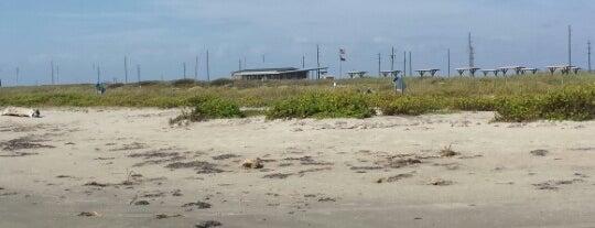 Galveston Island State Park is one of Galveston.