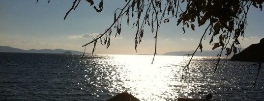 """Gümüşlük Sahili is one of """"Sıcak Temas"""" Yaşatan Yerler."""