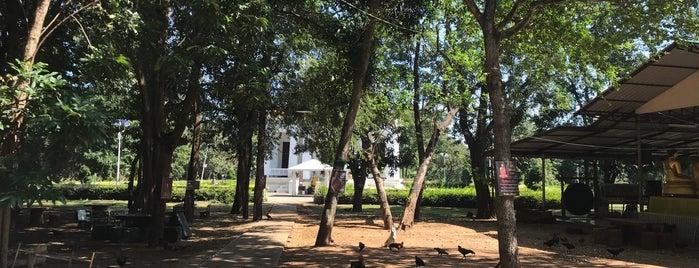 วัดถ้ำสิงโตทอง is one of ราชบุรี.