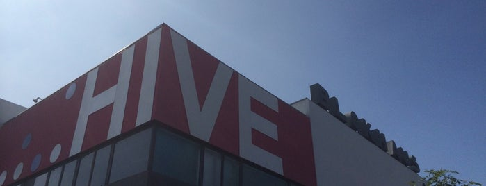 hive241 is one of San Diego.