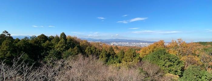 桜山展望台 is one of Gespeicherte Orte von Creig.