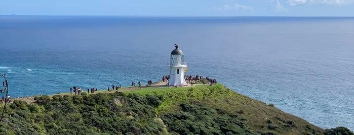 Cape Reinga is one of Nuova Zelanda.