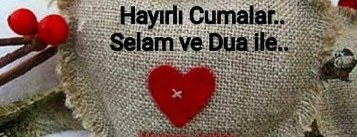 Ali Hoca Camii is one of Konya Meram Mescit ve Camileri.