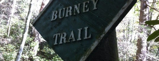 Glen Burney Trail is one of Trudy's list.