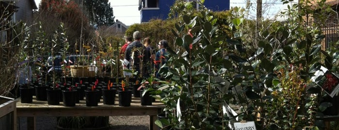 Pistils Nursery is one of Portland.