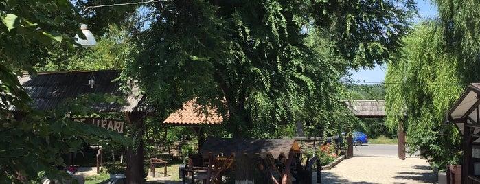 La Bădiș is one of Posti che sono piaciuti a Ana-Maria.