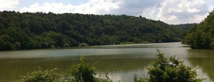Küçükelmalı Tabiat Parkı is one of Yılmaz'ın Beğendiği Mekanlar.