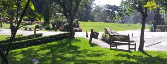 Cemitério Jardim Vale da Paz is one of Lieux qui ont plu à Fernando.