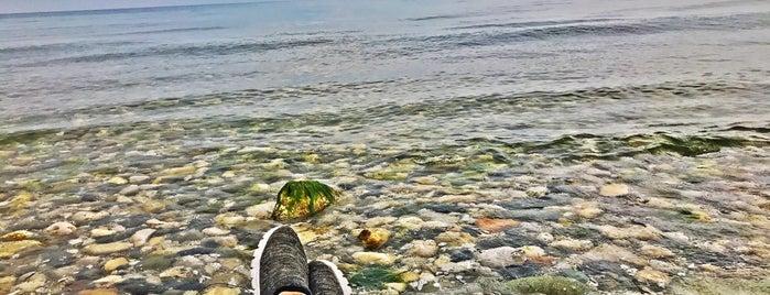 Ramsar Beach is one of Lugares favoritos de Mahtab.