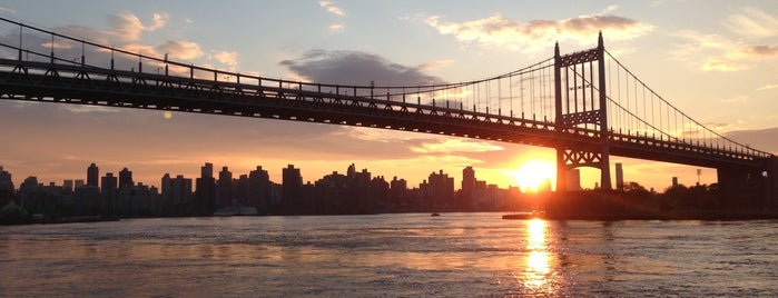Between The Bridges is one of NYC's to-do list.