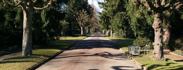 Friedhof Sihlfeld is one of Orte, die Jonathan gefallen.