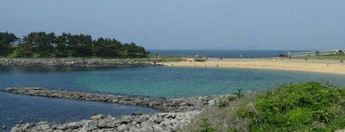 波戸岬海水浴場 is one of 日本の渚百選.