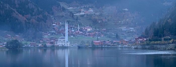 Trabzon Uzungöl is one of สถานที่ที่ Haydar ถูกใจ.