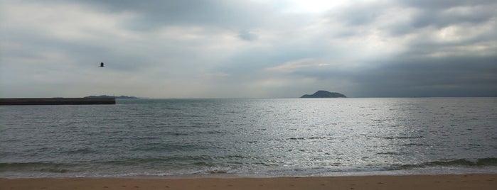 志島ヶ原海岸 is one of 日本の白砂青松100選.