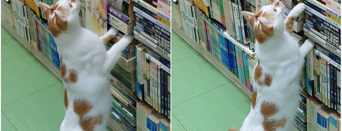 Sam Kee Book Company is one of Hong Kong.