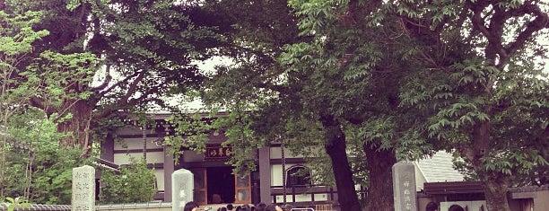 養源寺 is one of Posti che sono piaciuti a Yuzuki.