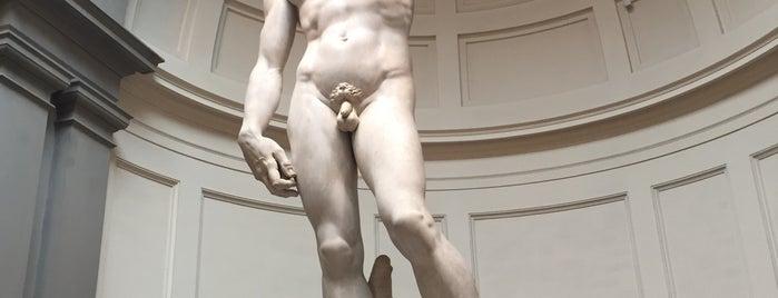 Galleria dell'Accademia is one of Serkan 님이 좋아한 장소.