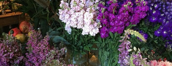 Poho Florist is one of Locais curtidos por Thomas.