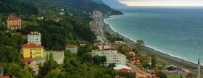 İnebolu Boyranaltı Sahil is one of สถานที่ที่บันทึกไว้ของ F..